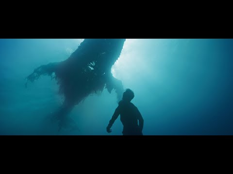 "[VIDEO] ""Birthplace"", le splendide clip aquatique de Novo Amor !"