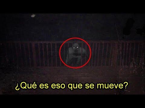 Extrañas Criaturas Humanoides Captadas por un Hombre en Japón (видео)