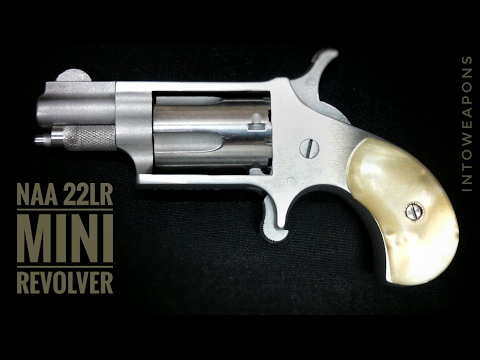 NAA 22lr Mini-Revolver:  Shooting & Overview