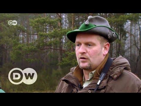 Die Deutschen und die Wölfe | DW Deutsch