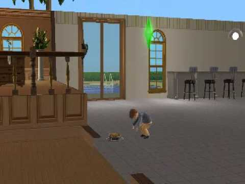 Sims 2:Toddler eats pet food and throws up