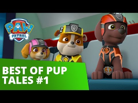 PAW Patrol | Best of Pup Tales #1 | Rescue Episode Compilation!