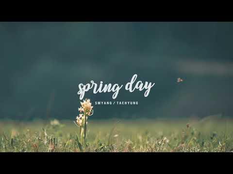 BTS '봄날 (Spring Day)' V (Taehyung) Version - Music Box Edition - Thời lượng: 4 phút, 17 giây.