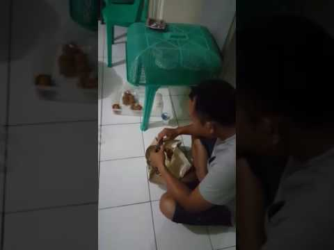 Download Video Tantangan Manekin pasis pip makassar ang XXX