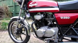 Bild Kleine Kawasaki Z 250 gerettet