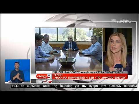 Η σωτηρία της ΔΕΗ επί τάπητος στη συνάντηση Χατζηδάκη-ΓΕΝΟΠ | 17/07/2019 | ΕΡΤ