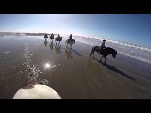 Horseback Beach Ride Fort Bragg California 2015