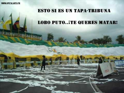 LOBO SUR BEREIRA VS ARTILLERIA VERDE SUR - Artillería Verde Sur - Deportes Quindío