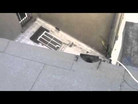 Dublin Roofing – Roof Repair Ireland – Irish Roofers – Roofing Contractors
