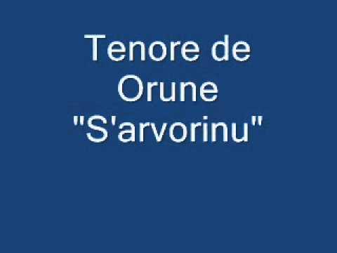 Tenore S'Arvorinu