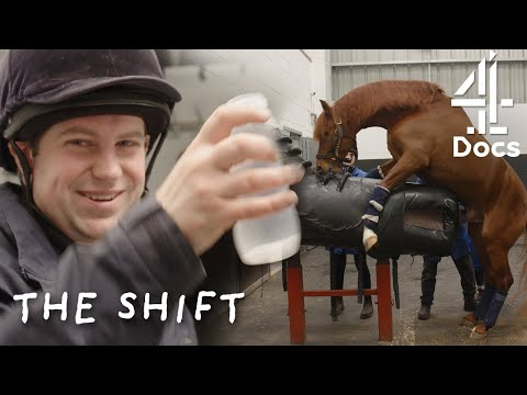 I W*** Horses For a Living | The Shift