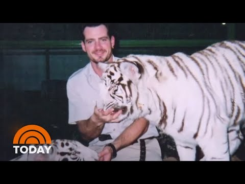Siegfried & Roy Animal Trainer Alleges Cover-Up In 2003 Tiger Attack | TODAY