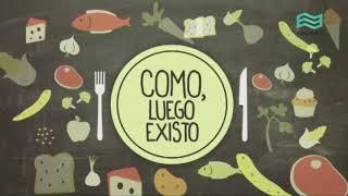 Alimentación saludable - Seguridad alimentaria.