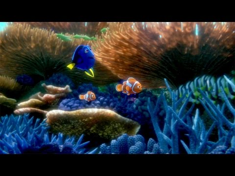 Speel Finding Dory trailer: DUIKEN Movie Day af