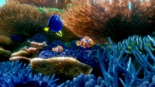 You've Found the Latest 'Finding Dory' Trailer - YouTube