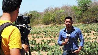 Equipe do Procase produz Grande Reportagem sobre os projetos produtivos de comunidades rurais na Par