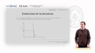 Microeconomía I - La Elasticidad De La Oferta Y De La Demanda (2) - Alfonso Rosa García