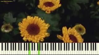 Вальс цветов - П. Чайковский (P. Tchaikovsky - Waltz of the Flowers_Nutcracker) (piano cover)