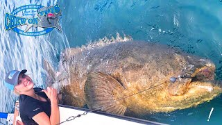 Operating nurse from Texas catching monster fish in Florida including Goliath grouper and bull sharks. And Captain Ben Chancey of Chew On This put Megan on a humongous Goliath grouper while bull sharks are lurking around looking to eat her baby. Be sure to check outhttp://www.youtube.com/realsaltlifefor more great videos.▬▬▬▬▬▬▬ About Chew On This ▬▬▬▬▬▬▬Chew On This provides the viewer a first hand look at catching mean aggressive high intensity fish fishing videos on the web. Captain Ben Chancey does fishing at its pinnacle and highest level of difficulty. Captain Ben has caught giant fish on just about everything including paddleboards, Kayaks, floats tubes, ultra skiffs, bay boats, flats boats, sportfishers and even gheenoes. Chew On This videos and content have been featured on Discovery, National Geographic, Today Show, Good Morning America, Fox News, ESPN, Fox Sports, The Weather Channel and many more! ► NEW VIDEO EVERY WEDNESDAY► Click Here to Subscribe → http://bit.ly/1tQiHaf► Find out More about boat → http://ultraskiff.com► Website → http://chewonthis.tv• Instagram → http://instagram.com/captchancey• Twitter → http://twitter.com/#!/captchancey• Email → captchancey@gmail.com• Snapchat → chewonthisfish Ben Chancey▬▬▬▬▬▬▬ PROMOTIONS ▬▬▬▬▬▬▬Remote Battery Boosterhttp://www.safetyboost.com#safetyboost.com#chewonthis#saltlifeClick Here to Subscribe! ► http://bit.ly/1tQiHaf▬▬▬▬▬▬▬ BRANDS WE USE ▬▬▬▬▬▬▬• HUMMINBIRD• Salt Life• Minn Kota• Diawa• Safety Boost Remote Battery Booster▬▬▬▬▬▬▬ RELATED VIDEOS ▬▬▬▬▬▬▬Tiny Creek Fishing after a Flood? (Surprise Catch!)https://www.youtube.com/watch?v=eFw250sA1uI&t=9sBest Fishing Lure for Bass and Snakeheads! DOOMSDAY TURTLE LURE?!https://www.youtube.com/watch?v=Yqn-RypJsHY&t=19sCreative Man Make Deep Hole Eel Trap With Water Pipe Catch A Lot Of Eels Near My Villagehttps://www.youtube.com/watch?v=8lBAIRqL4pA