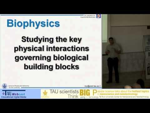 Nanobiophysik: Dekodierung  der Naturmysterien von unten nach oben