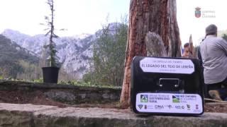 PROVOCA 2017, recuperación del Tejo de Lebeña