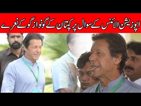 News Headlines  10:00 AM  24 April 2017