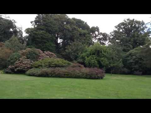 The Savill Garden, Windsor Great Park
