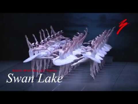 牧阿佐美バレヱ団 2014年10月公演 「白鳥の湖」 P.V