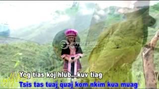 Paj Zaub Thoj - Ntshe Wb Tsis Yog Ntawv Txij Nkawm