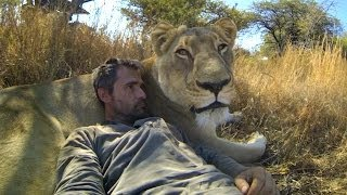 Meet The Lion Whisperer And Hug With Lions