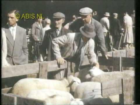 's Hertogenbosch - Een voorproefje van de film Den Bosch in vroeger jaren. Een samenvatting van authentieke en historische filmbeelden uit 's-Hertogenbosch van 1945- 1965 Met o...
