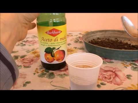 Misurare il PH Terreno con Bicarbonato e Aceto   Test senza Misuratore PH