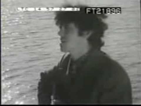 Donovan - Celeste lyrics