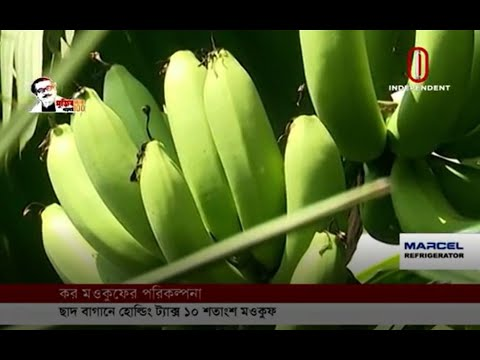 Tax waiver plan of North City Corporation (22-09-2020)Courtesy: Independent TV