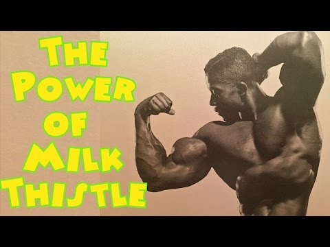 The Power of Milk Thistle – Bodybuilding Tips To Get Big