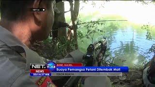 Video Buaya Pemangsa Petani Ditembak Mati Di Bone, Sulawesi Selatan - NET24 MP3, 3GP, MP4, WEBM, AVI, FLV Mei 2018