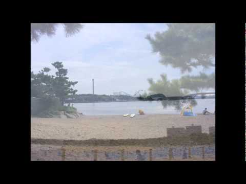 Video de Crack at Your Love de The Beach Boys