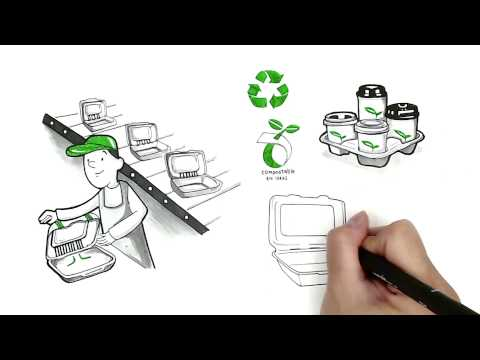 Green Century Enterprises: Environmentally Friendly Food Service Packaging
