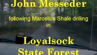 Marcellus in Loyalsock SP