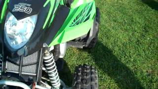 6. 2008 Arctic Cat DVX 250