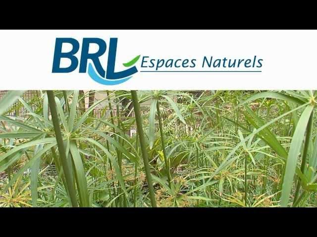 Présentation de BRL Espaces Naturels