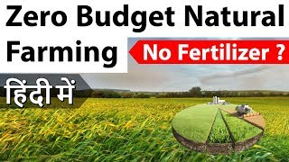Video Zero Budget Natural Farming in India - How it can transform Agriculture in - Current Affairs 2018 MP3, 3GP, MP4, WEBM, AVI, FLV Juni 2019