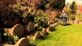 Támfal elemek növényei rézsűs területen - Kertbarátok - Kertészeti TV - műsor