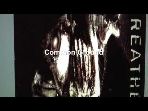 Tekst piosenki Midnight Oil - Common ground po polsku