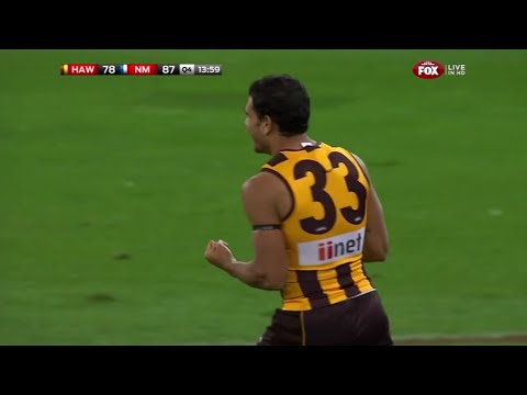 hawthorn - Hawthorn won a lucky one on a Sunday Twilight game at the 'G. North Melbourne put up a fight that was not expected and almost ran over the top of us. Cyril R...