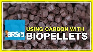 FAQ #22: Can I run biopellets in a BRS Dual Reactor along with carbon? | #52FAQ
