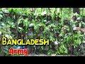 যেকোন পরিস্থিতিতে সেনাবাহিনী প্রস্তুত | BD army always ready | মিয়ানমার ভীত - কম্পিত