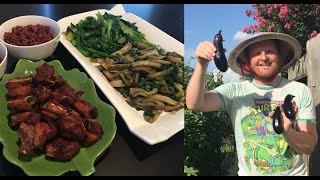 Video Bữa cơm đơn giản với sườn chiên, cải xào và cà tím nướng mỡ hành - Cà tím tự trồng tại nhà ở Mỹ MP3, 3GP, MP4, WEBM, AVI, FLV Agustus 2018