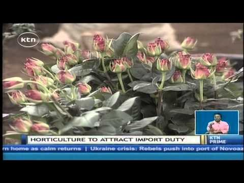 Government - The Kenyan government may soon decide to sign critical trade agreements with the European Union without its east African community partners. According to sources at the foreign affairs ministry,...