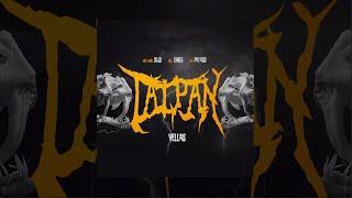 Vellas - Taipan 🐍